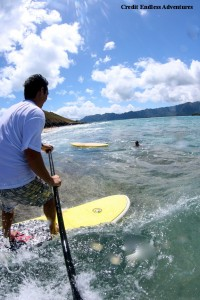 SUP at surf spots (Endless Adventures)