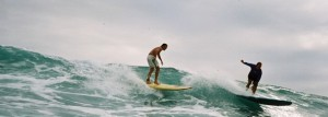Share The Wave (Credit Aloha Surf Guide)
