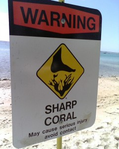 Sign - Sharp Coral