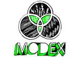 modex_logo
