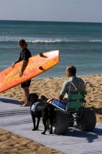 AccesSurf Beach Access