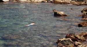 Never Snorkel Alone