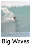 big wave surfing WEB